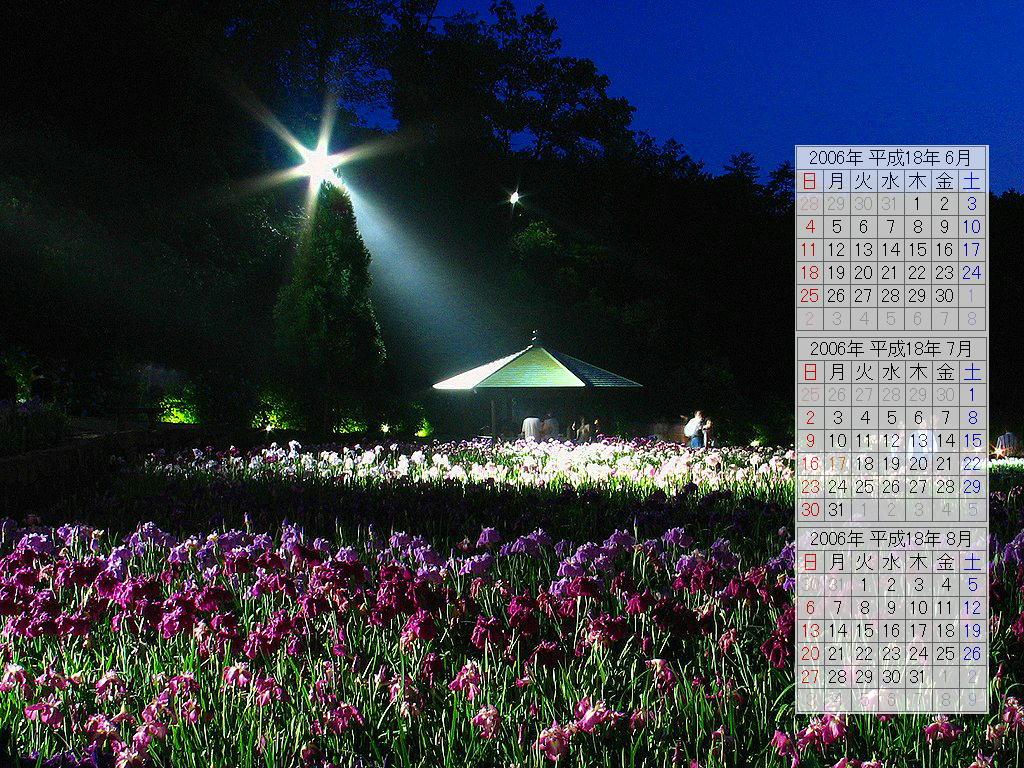 花ショウブ園と花ショウブの壁紙写真/2006年無料壁紙カレンダー・無料写真素材
