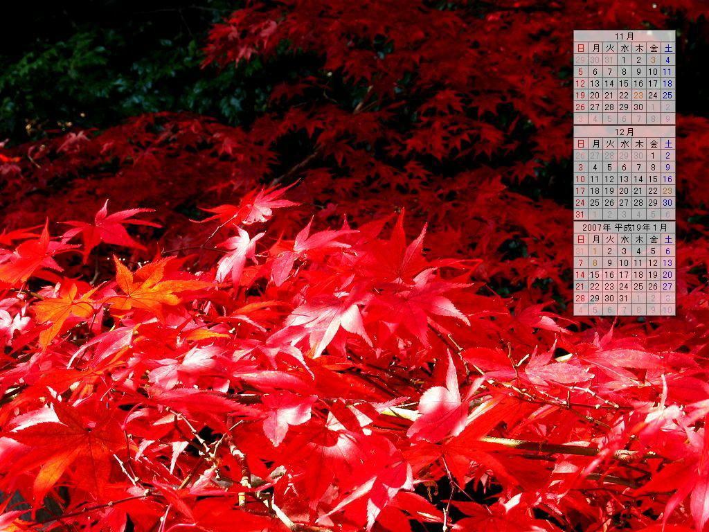 紅葉の壁紙/2006年秋のデスクトップ無料壁紙カレンダー・無料写真素材