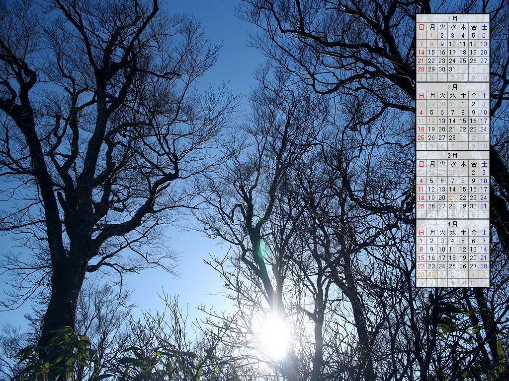 壁紙カレンダー・冬の木立/2007年無料カレンダー/2007年1月~2007年4月