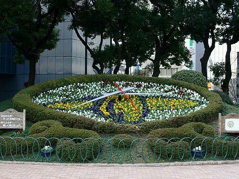 神戸空港マリンエア開港1周年記念の花時計・フラワーロード/神戸市