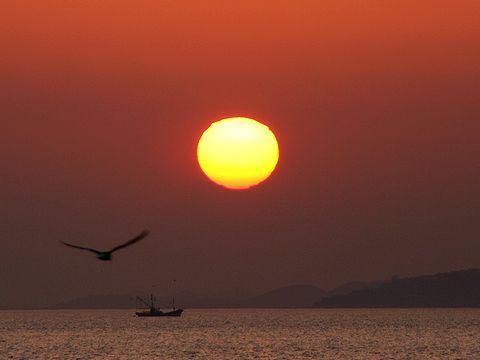 夕陽・新舞子浜の干潟/たつの市御津町