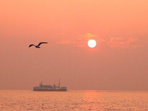 秋の夕焼け空と夕日・瀬戸内海の夕焼け空・海に沈む夕日☆夕陽の中のたこフェリーとカモメ