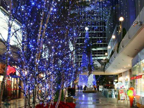 神戸ハーバーランドのクリスマスツリーとイルミネーションの無料壁紙・写真素材