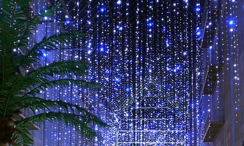 クリスマスイルミネーションの壁紙