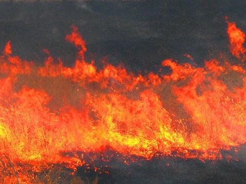 Fire_002
