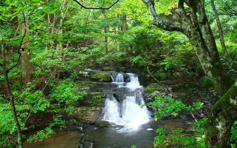 阿瀬渓谷の画像・渓流と滝の壁紙写真