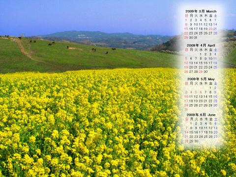 Calendar_200903_001