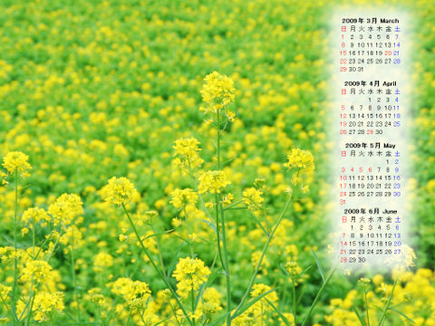 Calendar_200903_002