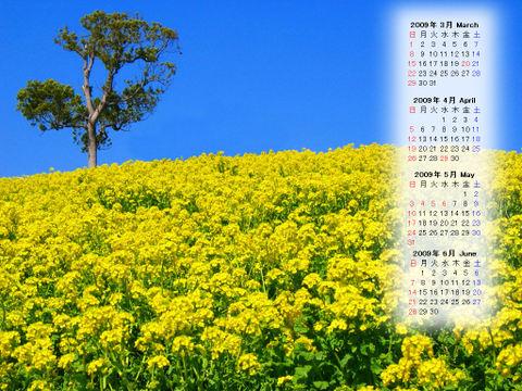 Calendar_200903_003
