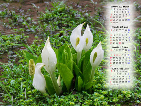 Calendar_200903_005