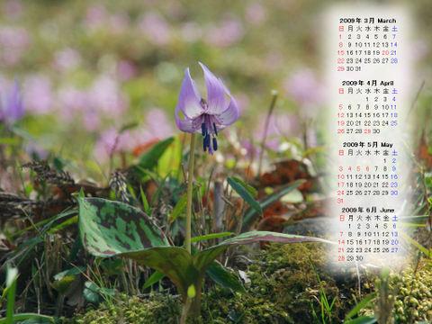 Calendar_200903_007