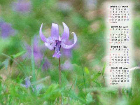 Calendar_200903_008