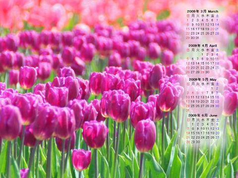 Calendar_200903_012