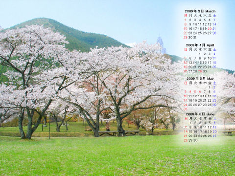 Calendar_200903_013