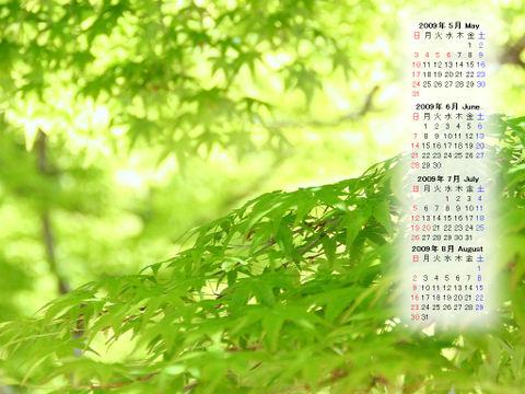 Calendar_200905_002