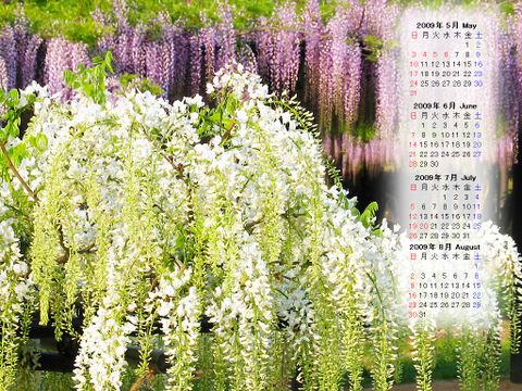 Calendar_200905_006