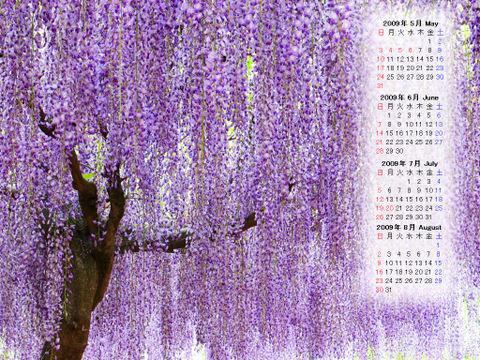 Calendar_200905_007