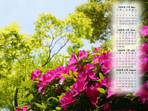Calendar_200905_010