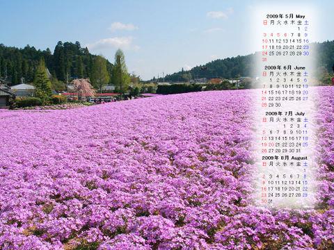 Calendar_200905_011