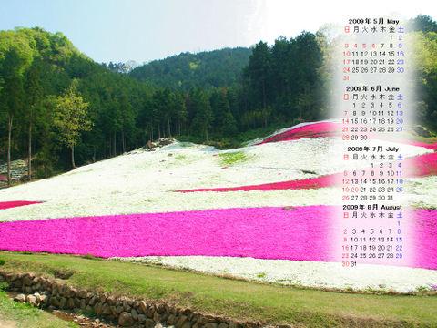 Calendar_200905_012