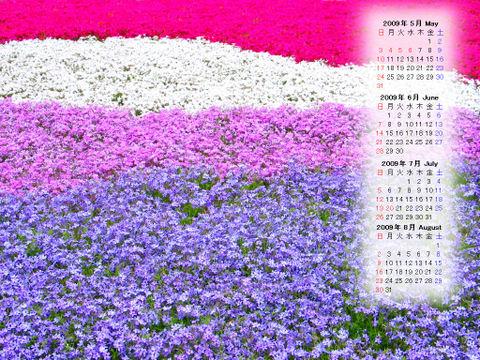 Calendar_200905_013