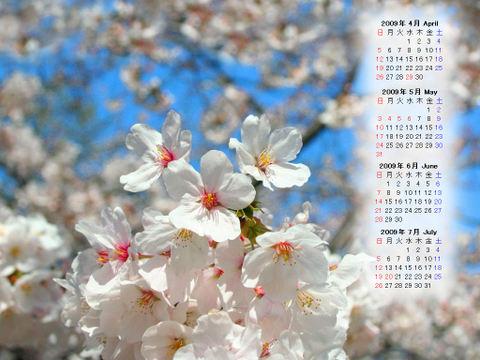 Calendar_200904_006