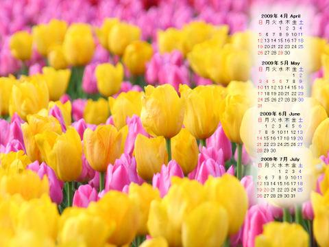Calendar_200904_008