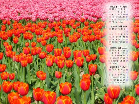 Calendar_200904_009
