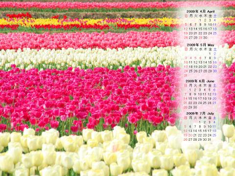 Calendar_200904_010