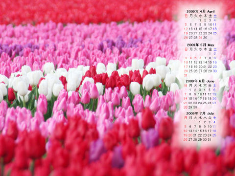 Calendar_200904_011