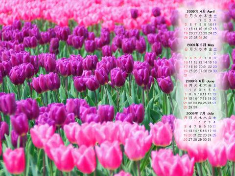 Calendar_200904_012