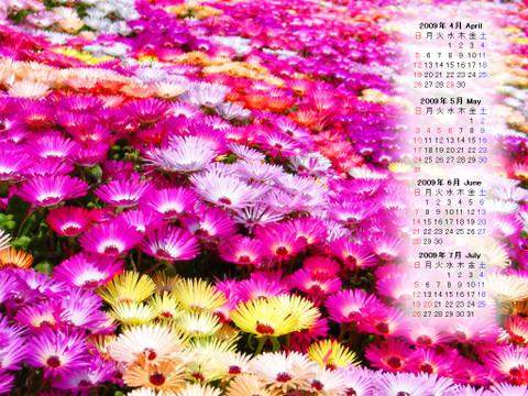 Calendar_200904_014