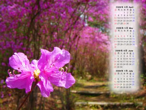 Calendar_200904_015