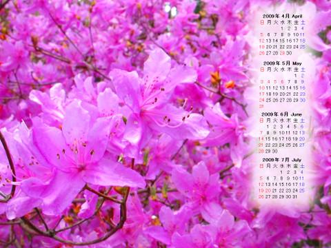 Calendar_200904_016