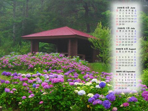 Calendar_200906_003