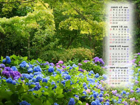 Calendar_200906_004