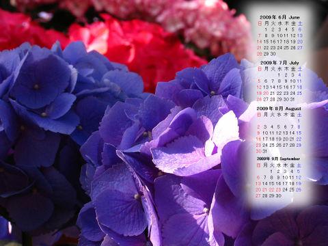 Calendar_200906_007