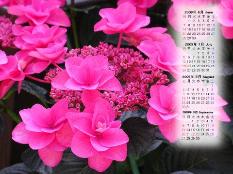 Calendar_200906_008