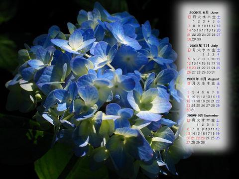 Calendar_200906_010