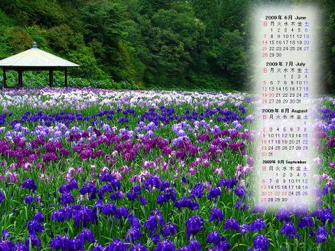 Calendar_200906_011