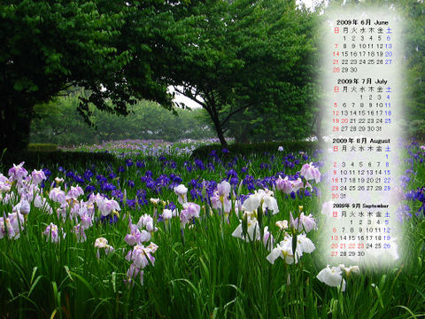 Calendar_200906_013
