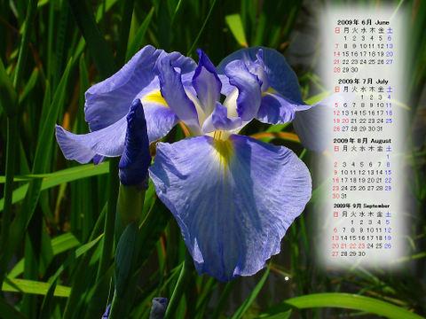 Calendar_200906_015