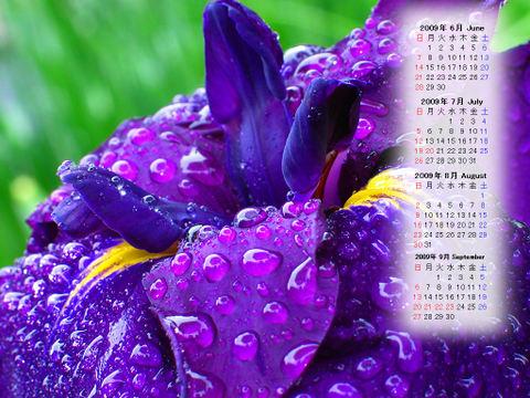 Calendar_200906_016