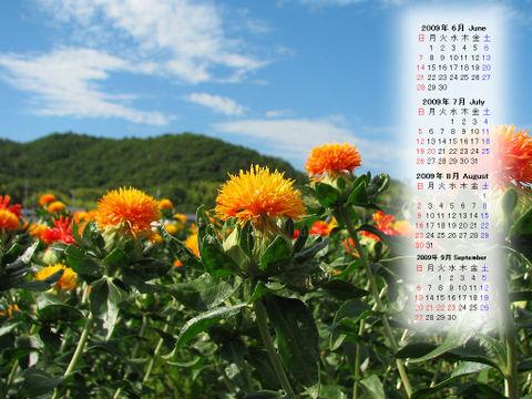 Calendar_200906_020