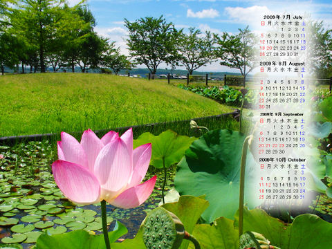 Calendar_200907_005