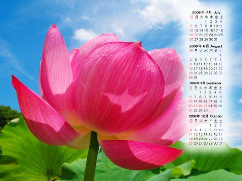Calendar_200907_006