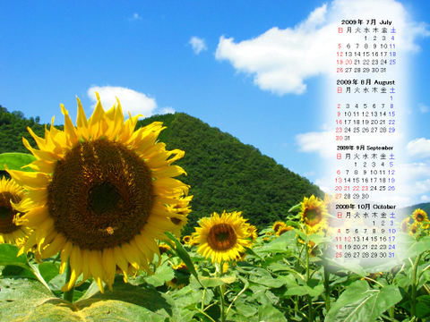 Calendar_200907_010