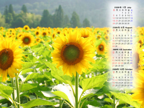 Calendar_200907_011