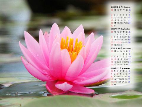 Calendar_200908_008