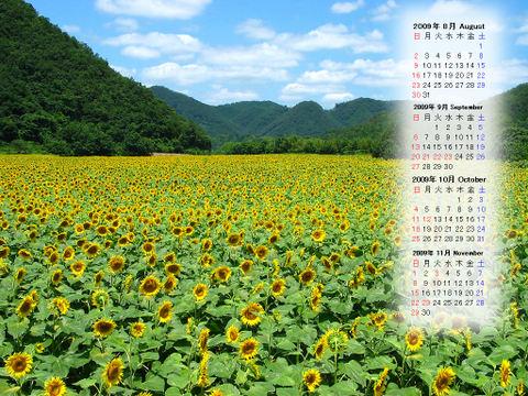Calendar_200908_009